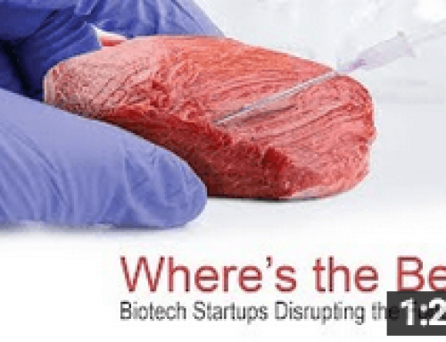 Where's the Beef? Startups Disrupting the Food Chain